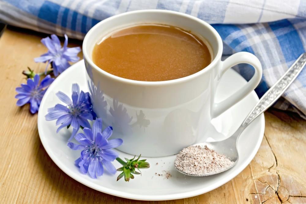 Alternatív kávék: Cikória